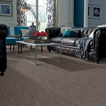 Anso® Nylon Carpet | Front Royal, VA